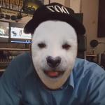 @AlexPayola – #Panda!